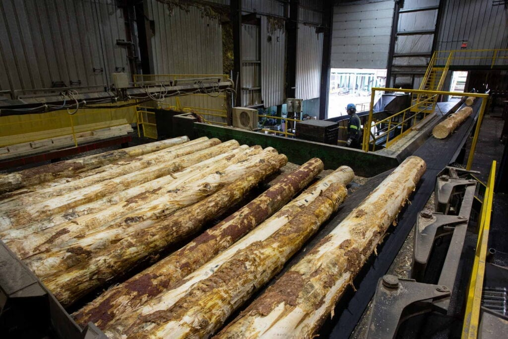 lumber production photography